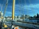 Sail Boats 111