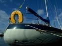 Sail Boats 113