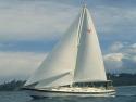 Sail Boats 117