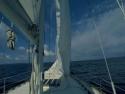 Sail Boats 121