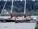 Sail Boats 124
