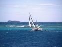 Sail Boats 125