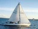 Sail Boats 126