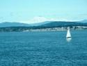 Sail Boats 127