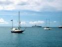 Sail Boats 129