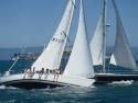 Sail Boats 131