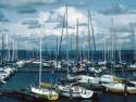 Sail Boats 132