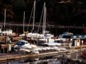 Sail Boats 13