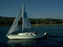 Sail Boats 197