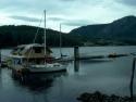 Sail Boats 212