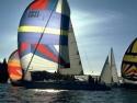 Sail Boats 214