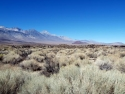 The Sierras  3