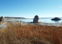 Tufa In Lake 