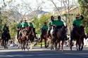 Volunteer Mounted Patrol