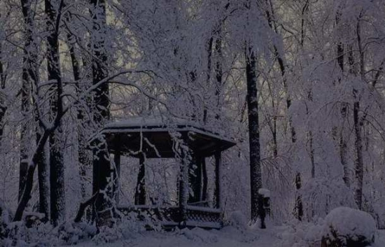 Winter Scene 003
