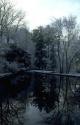 Winter Scene 010