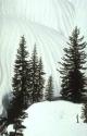 Winter Scene 011