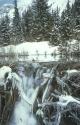 Winter Scene 012