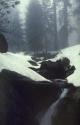 Winter Scene 016