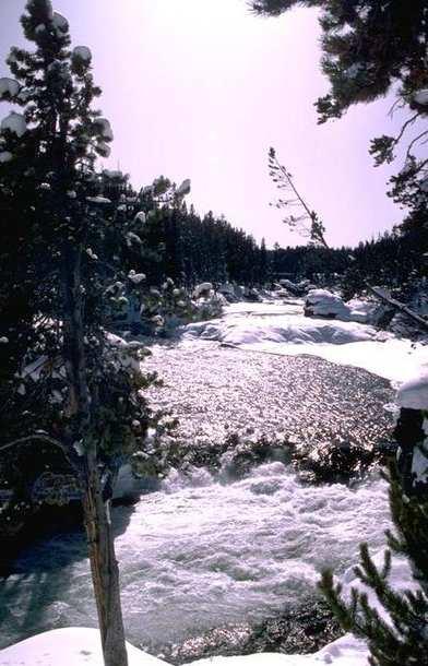 Winter Scene 026