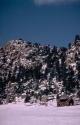 Winter Scene 027