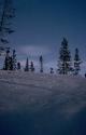 Winter Scene 035