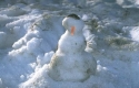 Winter Scene 105