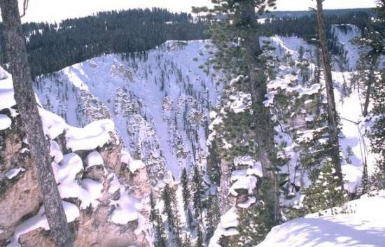 Winter Scene 106