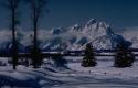 Winter Scene 107