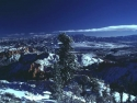 Winter Scene 281