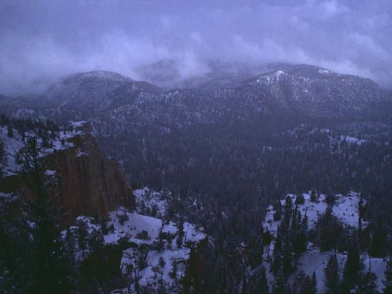 Winter Scene 283