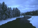 Winter Scene 287
