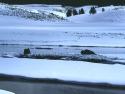 Winter Scene 288